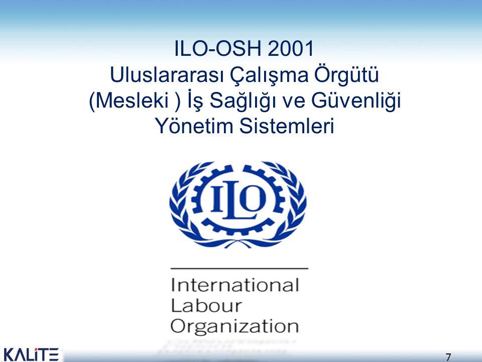ILO-OSH 2001 Uluslararası Çalışma Örgütü