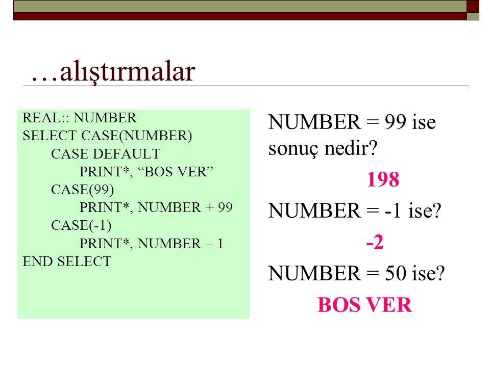 …alıştırmalar NUMBER = 99 ise sonuç nedir 198 NUMBER = -1 ise -2
