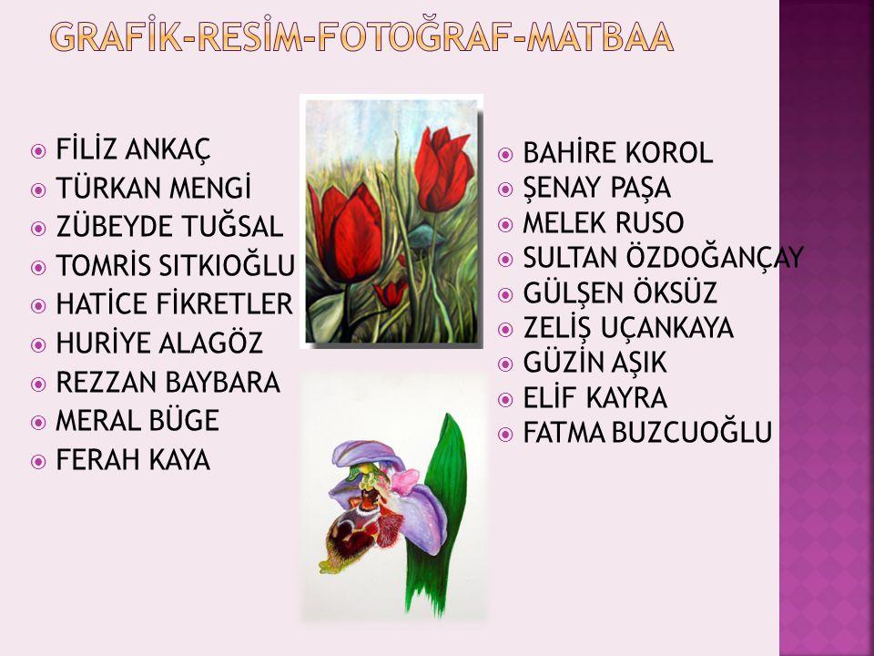 GRAFİK-RESİM-FOTOĞRAF-MATBAA