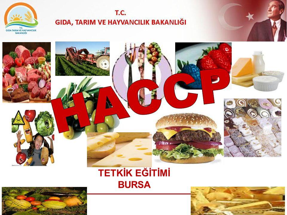 HACCP TETKİK EĞİTİMİ BURSA