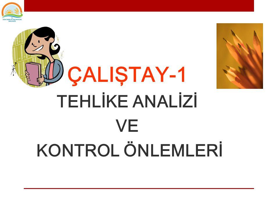 ÇALIŞTAY-1 TEHLİKE ANALİZİ VE KONTROL ÖNLEMLERİ