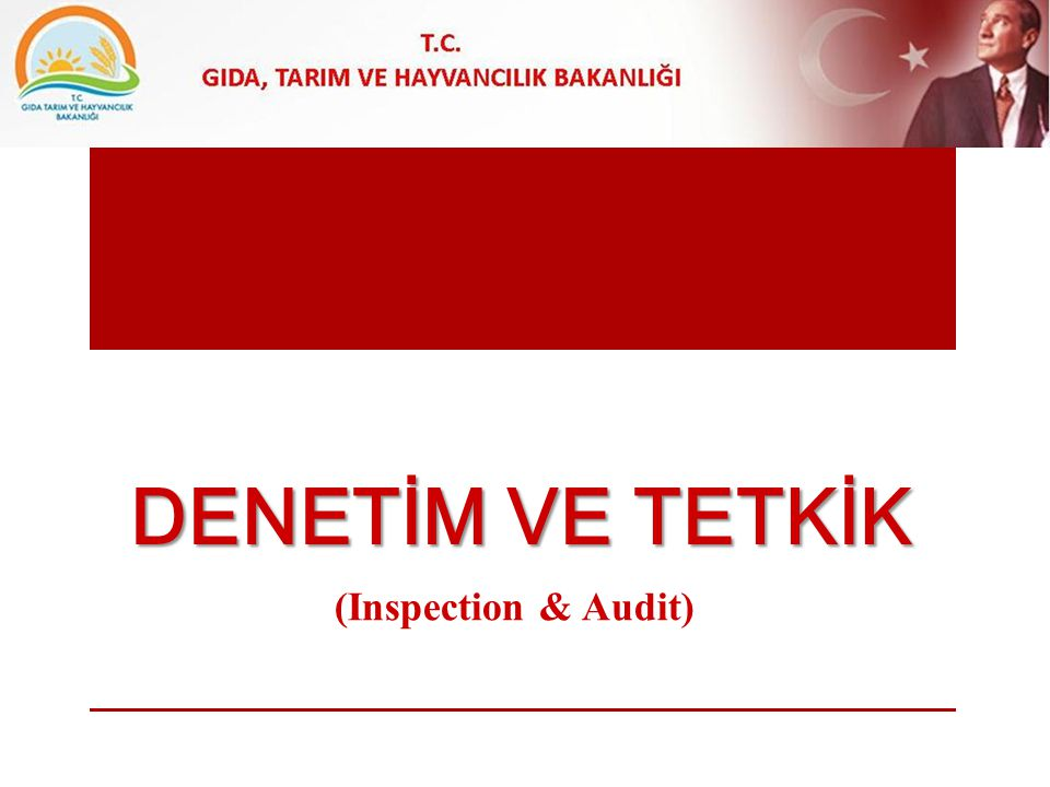 DENEtİm ve TETKİK (Inspection & Audit)