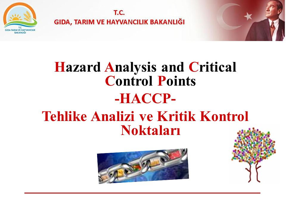 Hazard Analysis and Critical Control Points -HACCP-