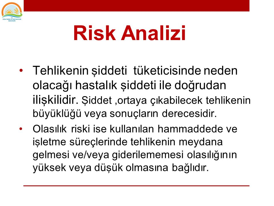 Risk Analizi