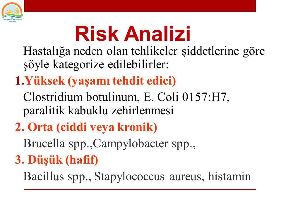 Risk Analizi Yüksek (yaşamı tehdit edici)