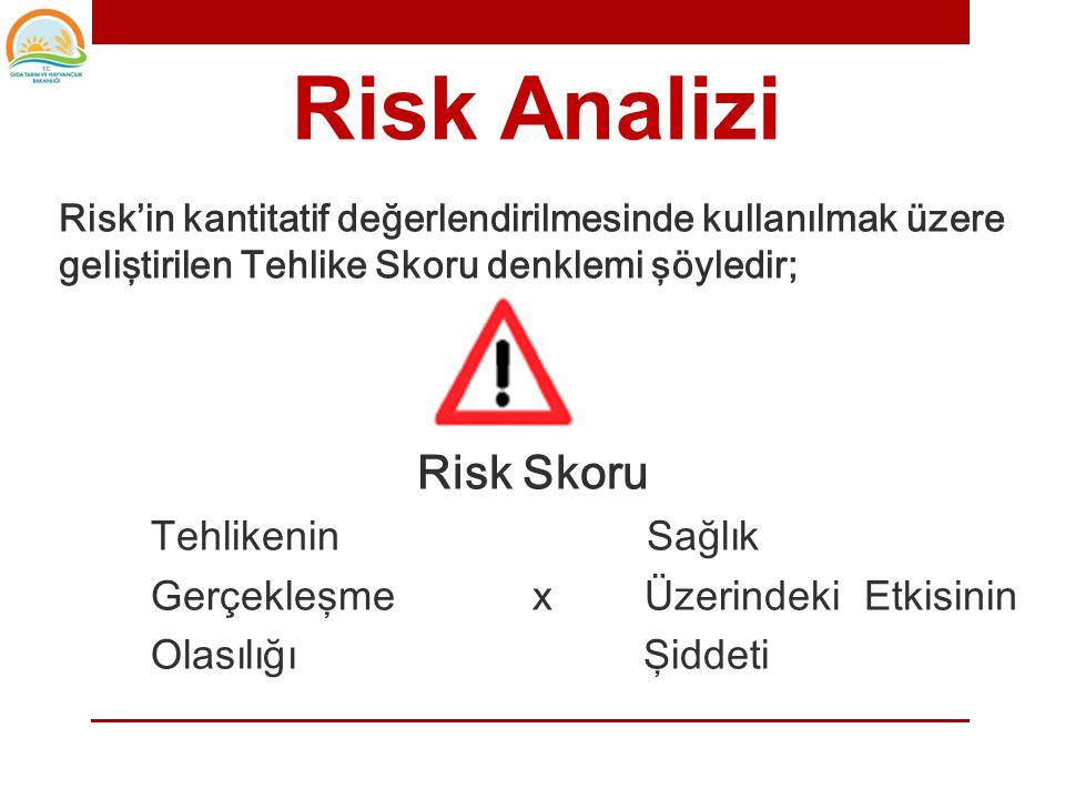 Risk Analizi Risk Skoru Tehlikenin Sağlık