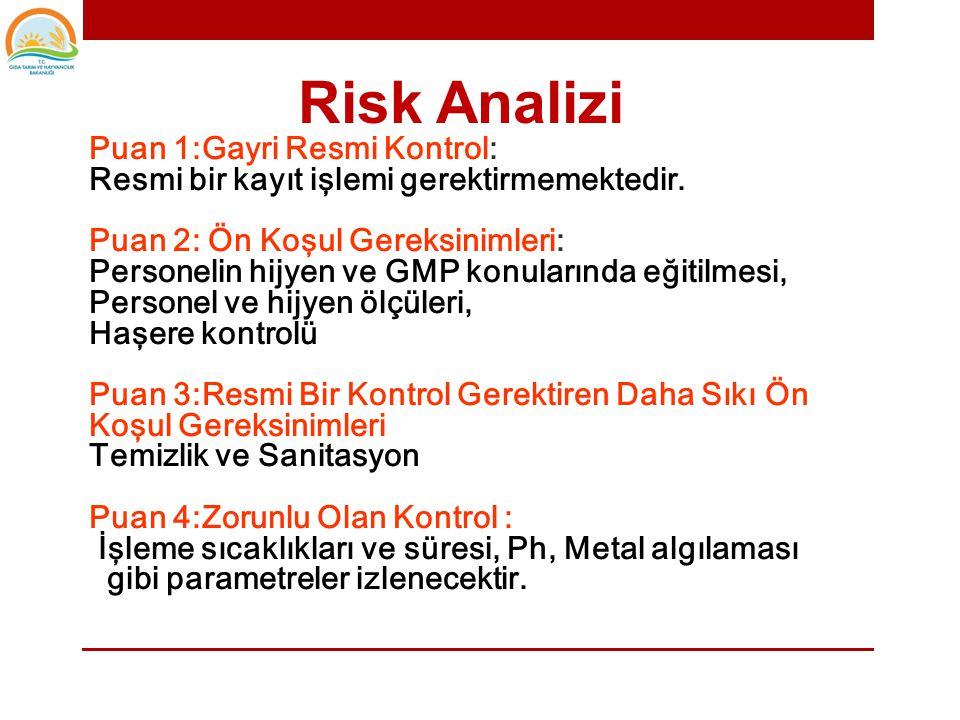 Risk Analizi Puan 1:Gayri Resmi Kontrol: