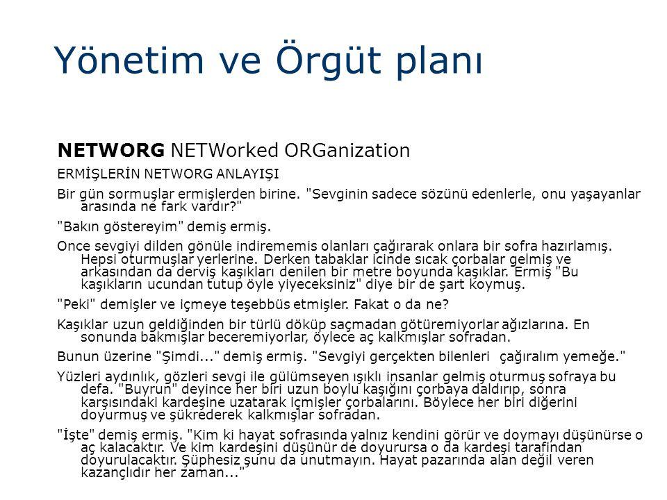 Yönetim ve Örgüt planı NETWORG NETWorked ORGanization
