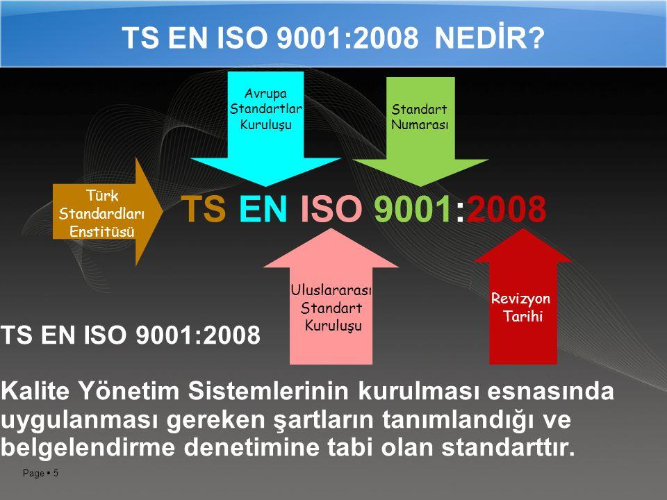 Standardları Enstitüsü
