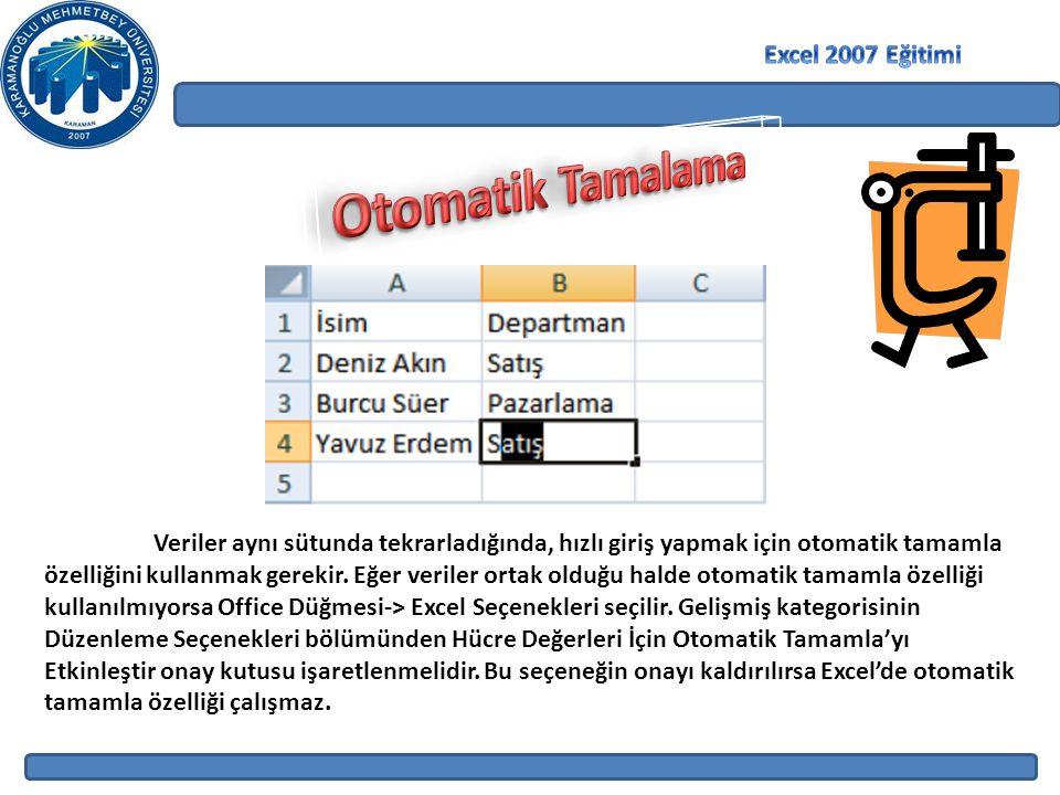 Otomatik Tamalama Excel 2007 Eğitimi