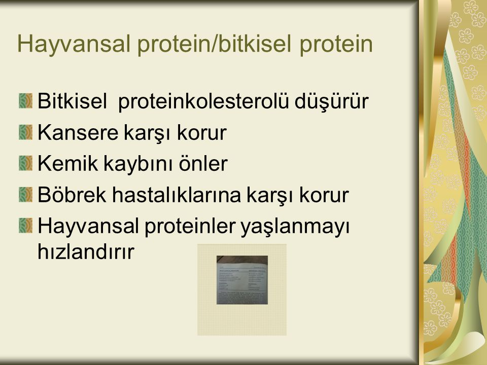 Hayvansal protein/bitkisel protein