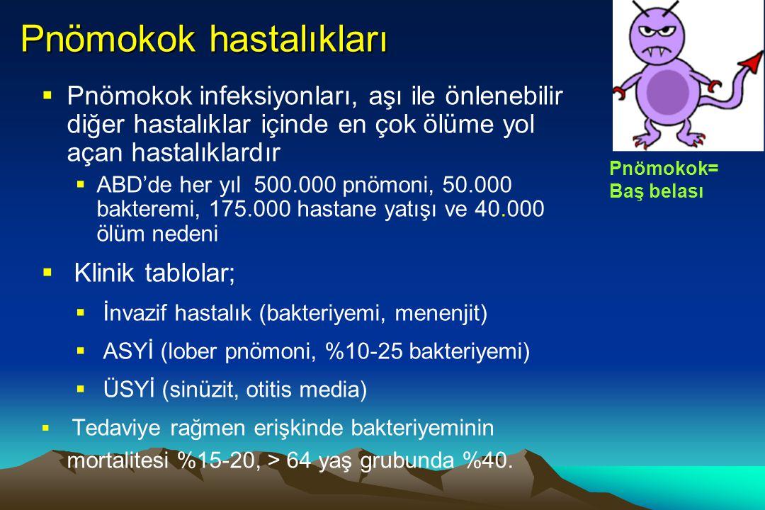 Pnömokok hastalıkları