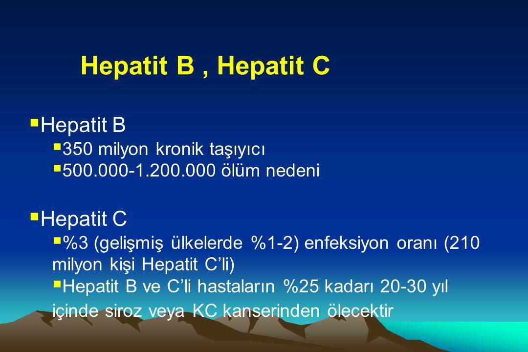 Hepatit B , Hepatit C Hepatit B Hepatit C 350 milyon kronik taşıyıcı