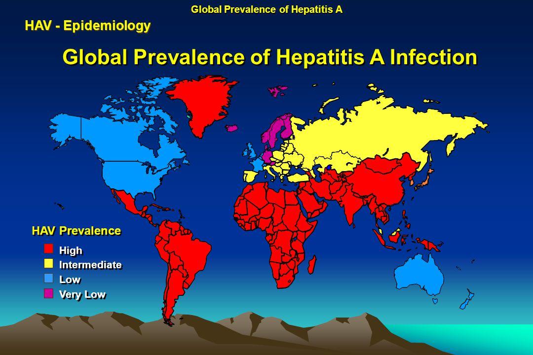 Global Prevalence of Hepatitis A