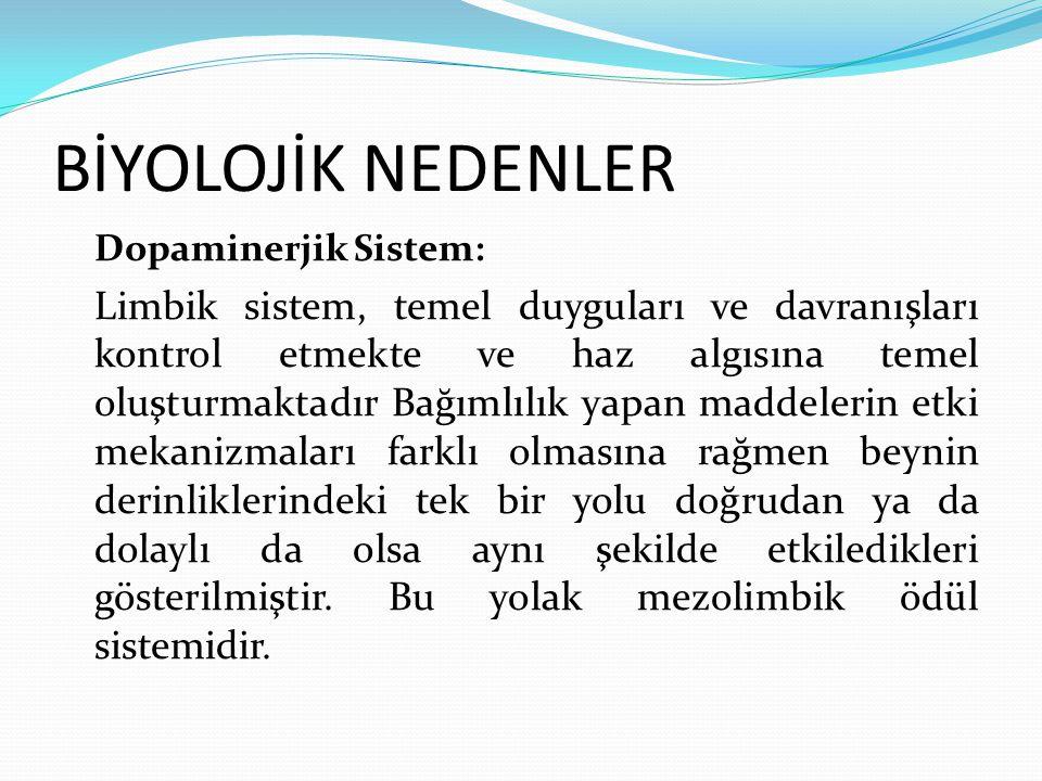 BİYOLOJİK NEDENLER Dopaminerjik Sistem: