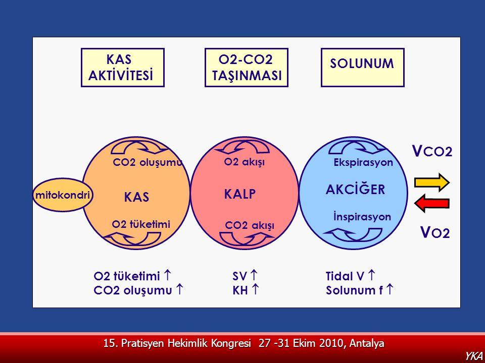 15. Pratisyen Hekimlik Kongresi 27 -31 Ekim 2010, Antalya