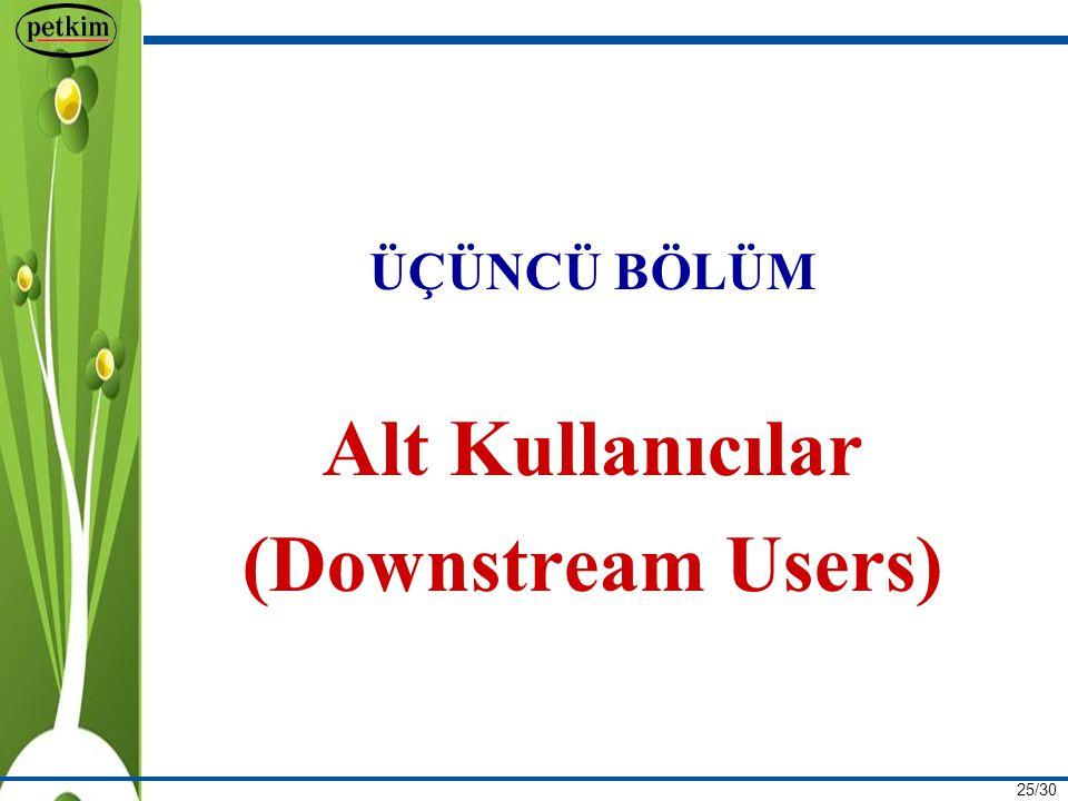 Alt Kullanıcılar (Downstream Users)