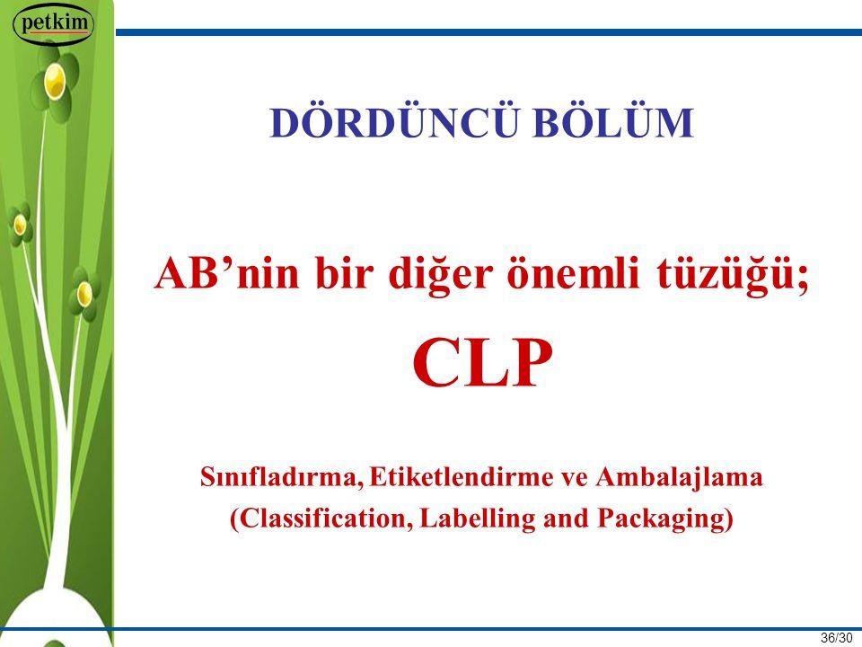 CLP AB'nin bir diğer önemli tüzüğü; DÖRDÜNCÜ BÖLÜM