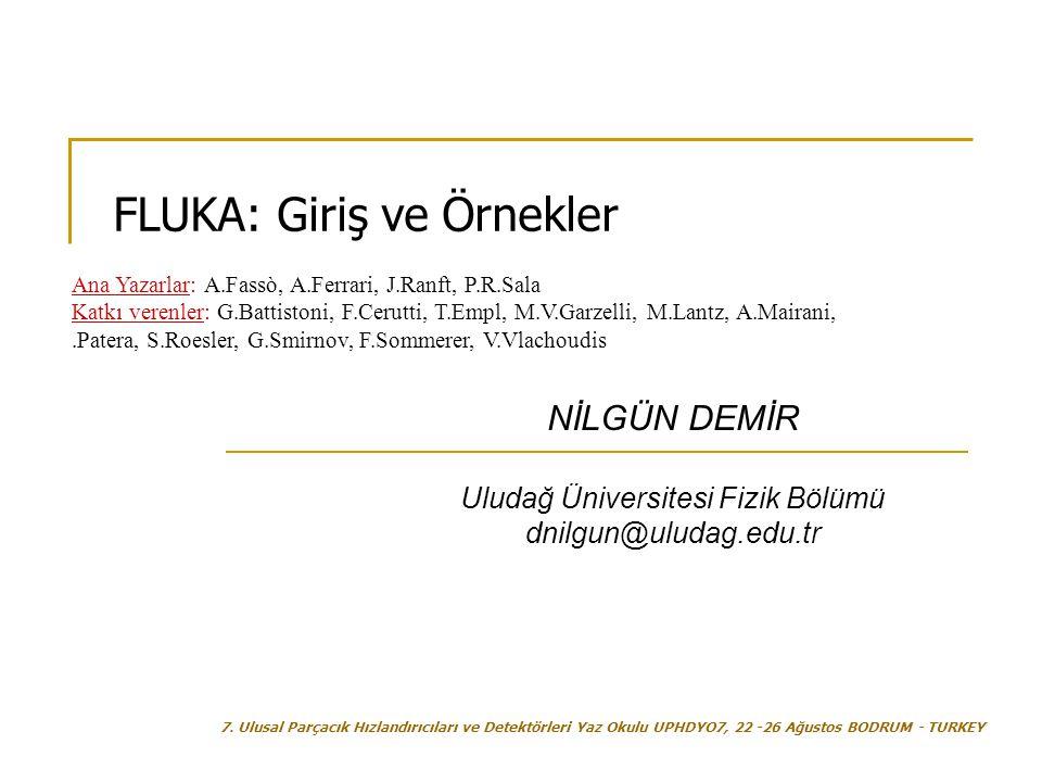 Uludağ Üniversitesi Fizik Bölümü