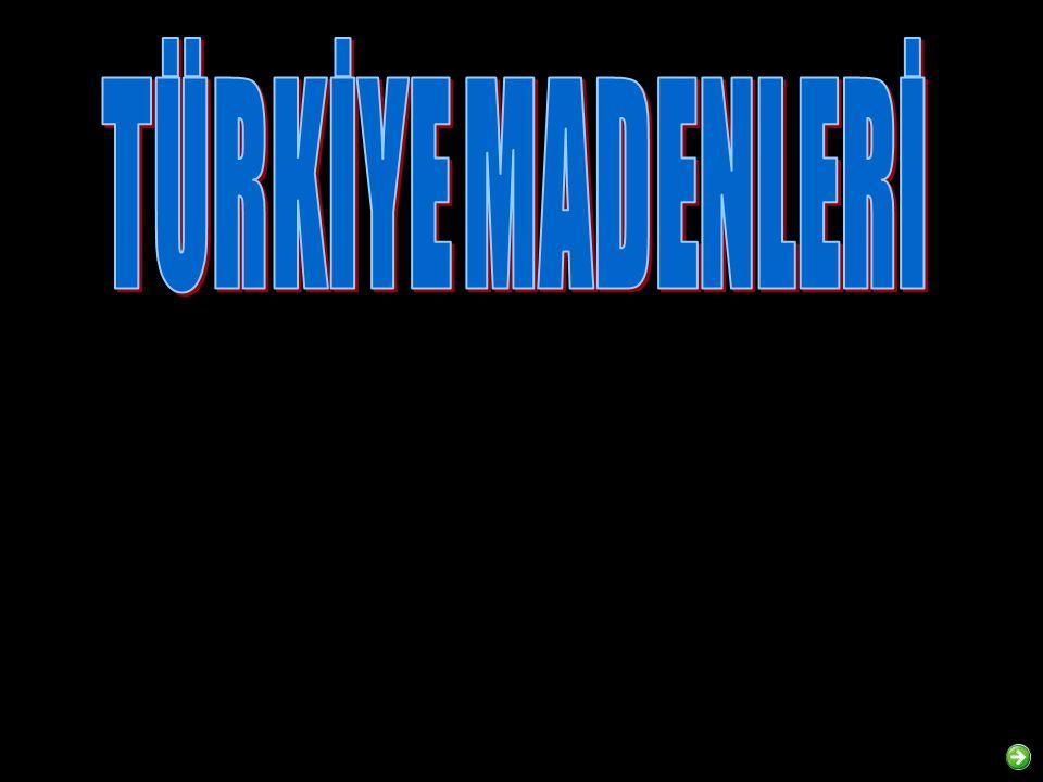 TÜRKİYE MADENLERİ