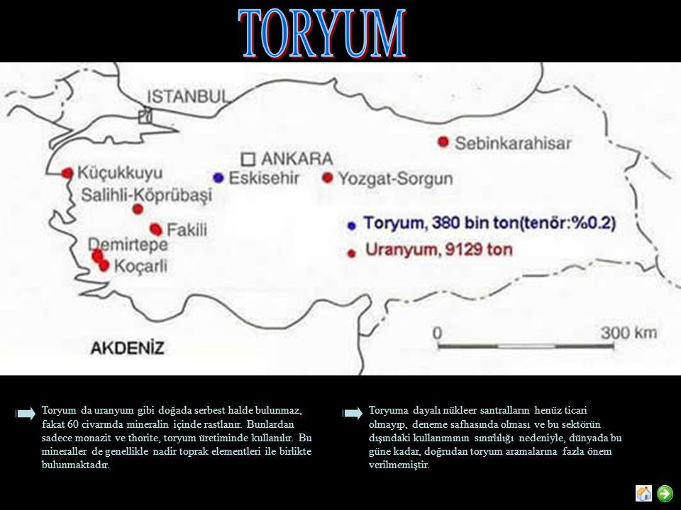 TORYUM