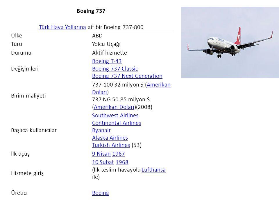 Türk Hava Yollarına ait bir Boeing 737-800