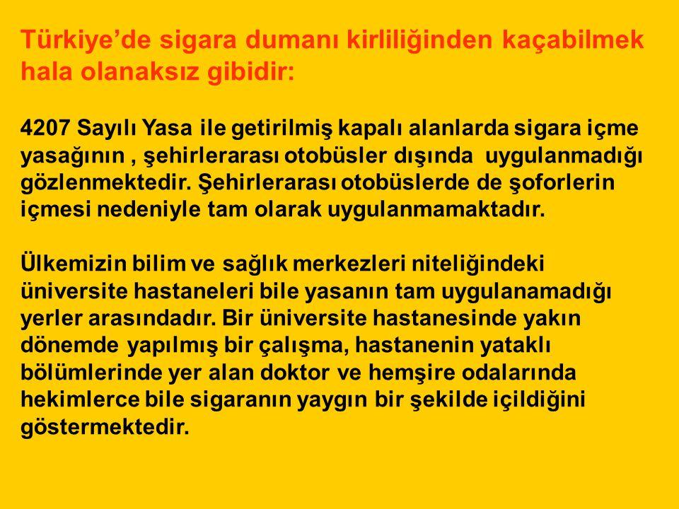 Türkiye'de sigara dumanı kirliliğinden kaçabilmek hala olanaksız gibidir: