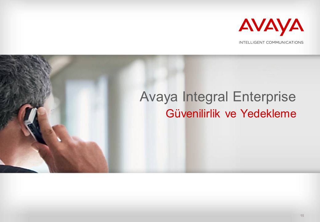 Avaya Integral Enterprise