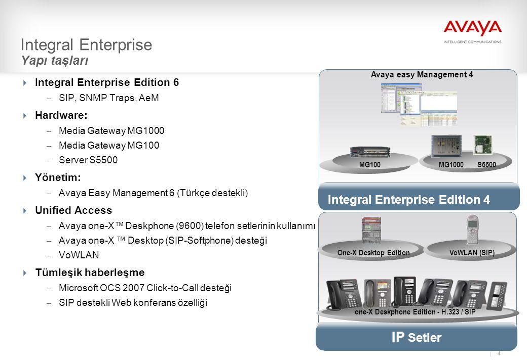 Integral Enterprise Yapı taşları