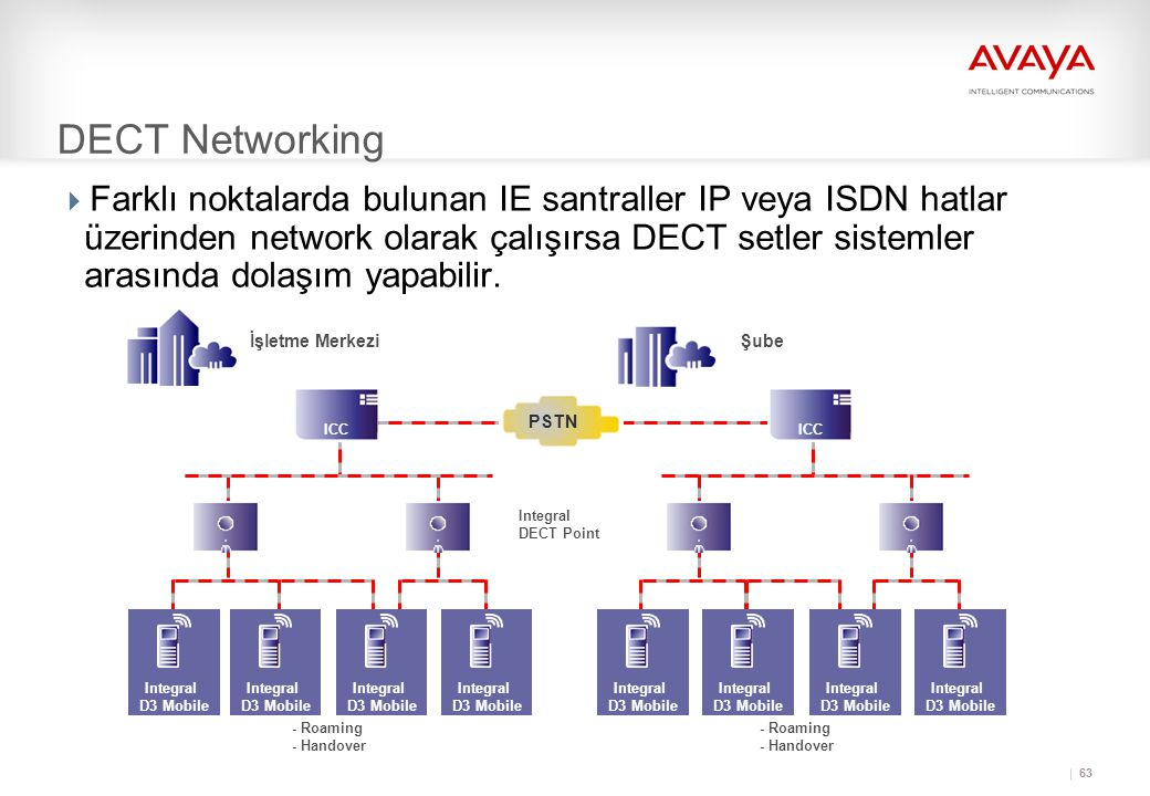 DECT Networking