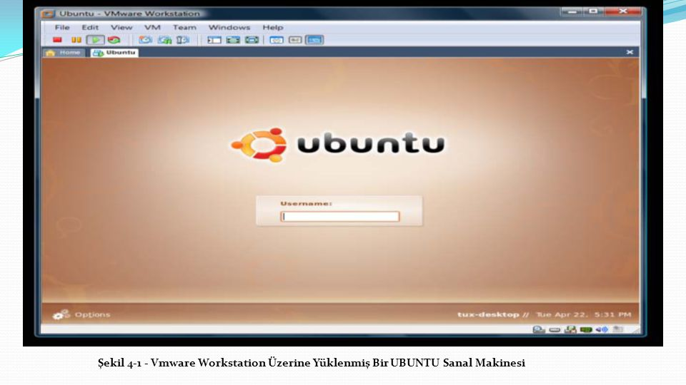 Şekil 4-1 - Vmware Workstation Üzerine Yüklenmiş Bir UBUNTU Sanal Makinesi