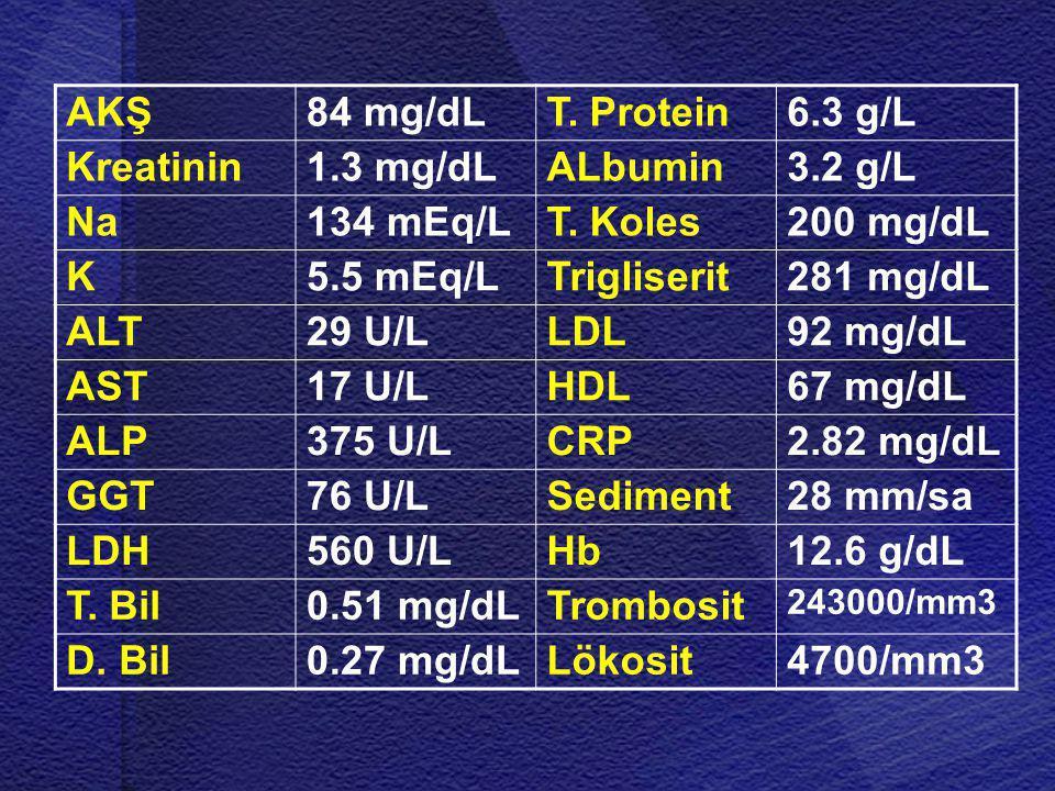 AKŞ 84 mg/dL T. Protein 6.3 g/L Kreatinin 1.3 mg/dL ALbumin 3.2 g/L Na