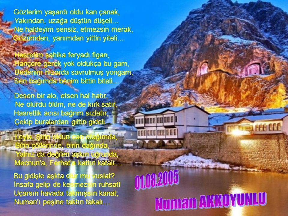 G A M L I Y A M Numan AKKOYUNLU 01.08.2005