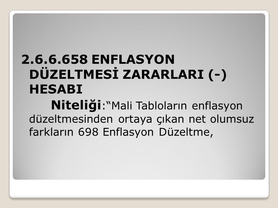 2.6.6.658 ENFLASYON DÜZELTMESİ ZARARLARI (-) HESABI