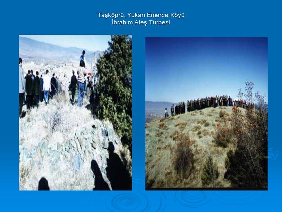 Taşköprü, Yukarı Emerce Köyü İbrahim Ateş Türbesi