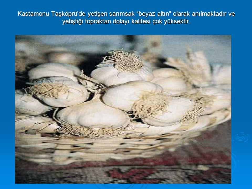 Kastamonu Taşköprü'de yetişen sarımsak beyaz altın olarak anılmaktadır ve yetiştiği topraktan dolayı kalitesi çok yüksektir.