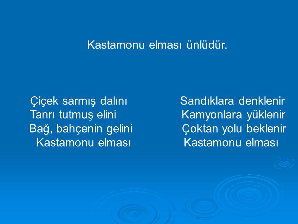 Kastamonu elması ünlüdür.