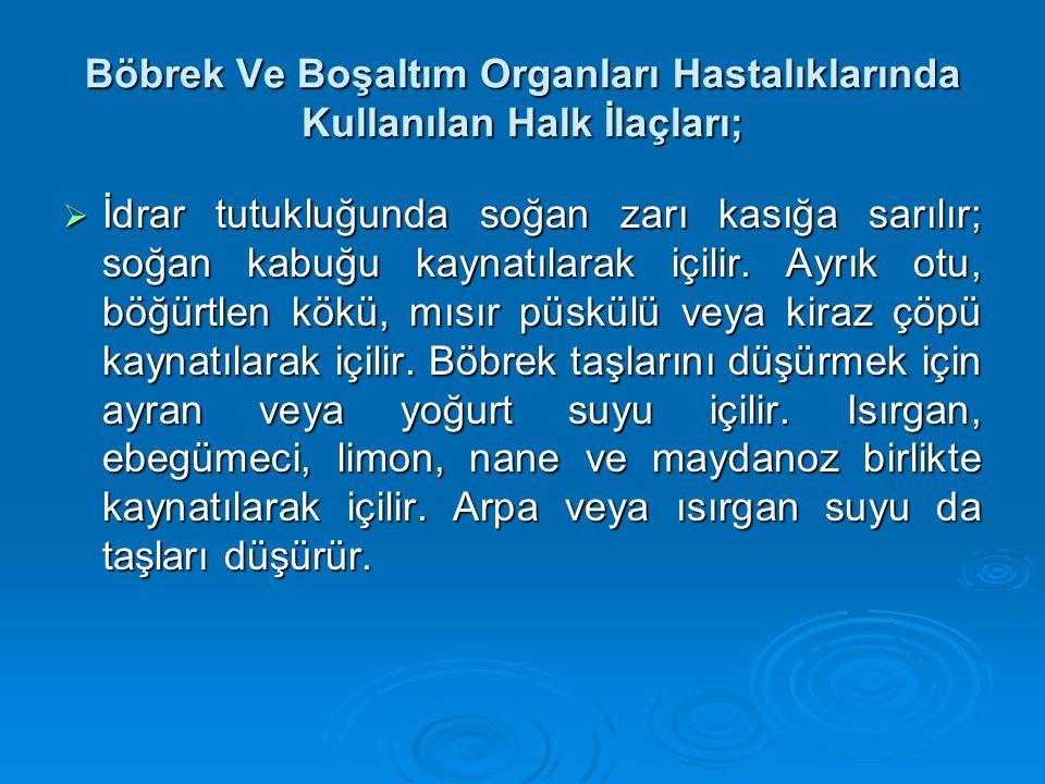 Böbrek Ve Boşaltım Organları Hastalıklarında Kullanılan Halk İlaçları;