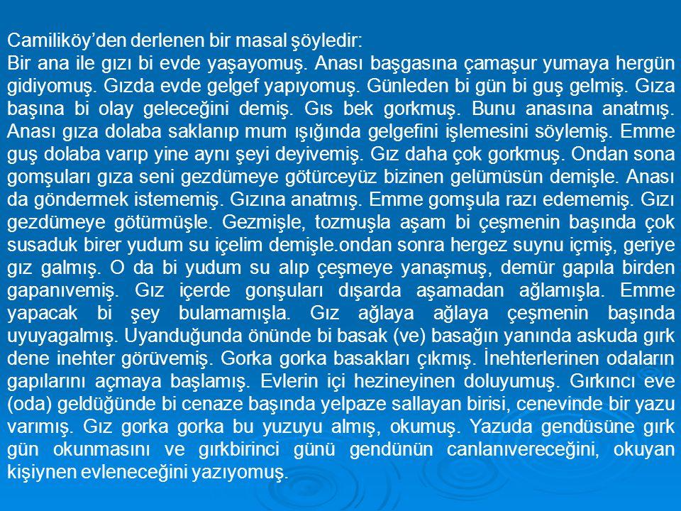 Camiliköy'den derlenen bir masal şöyledir: