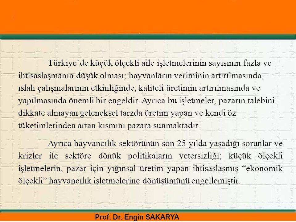Türkiye'de küçük ölçekli aile işletmelerinin sayısının fazla ve ihtisaslaşmanın düşük olması; hayvanların veriminin artırılmasında, ıslah çalışmalarının etkinliğinde, kaliteli üretimin artırılmasında ve yapılmasında önemli bir engeldir. Ayrıca bu işletmeler, pazarın talebini dikkate almayan geleneksel tarzda üretim yapan ve kendi öz tüketimlerinden artan kısmını pazara sunmaktadır.