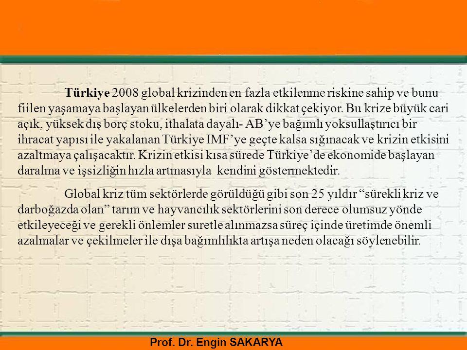 Türkiye 2008 global krizinden en fazla etkilenme riskine sahip ve bunu fiilen yaşamaya başlayan ülkelerden biri olarak dikkat çekiyor. Bu krize büyük cari açık, yüksek dış borç stoku, ithalata dayalı- AB'ye bağımlı yoksullaştırıcı bir ihracat yapısı ile yakalanan Türkiye IMF'ye geçte kalsa sığınacak ve krizin etkisini azaltmaya çalışacaktır. Krizin etkisi kısa sürede Türkiye'de ekonomide başlayan daralma ve işsizliğin hızla artmasıyla kendini göstermektedir.