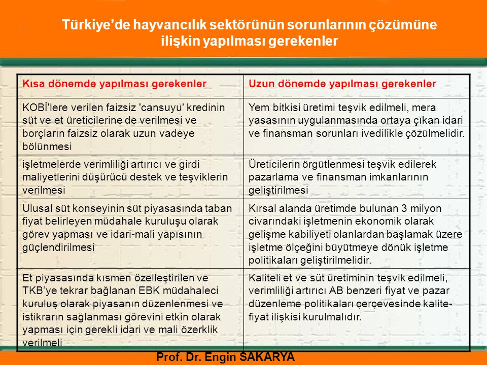 Türkiye'de hayvancılık sektörünün sorunlarının çözümüne ilişkin yapılması gerekenler