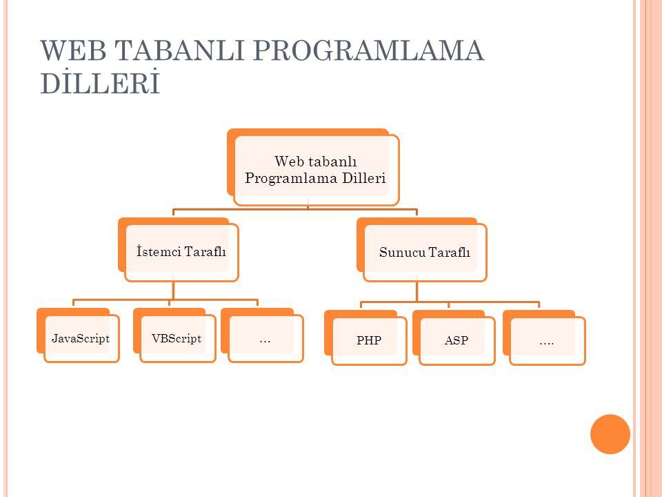 WEB TABANLI PROGRAMLAMA DİLLERİ
