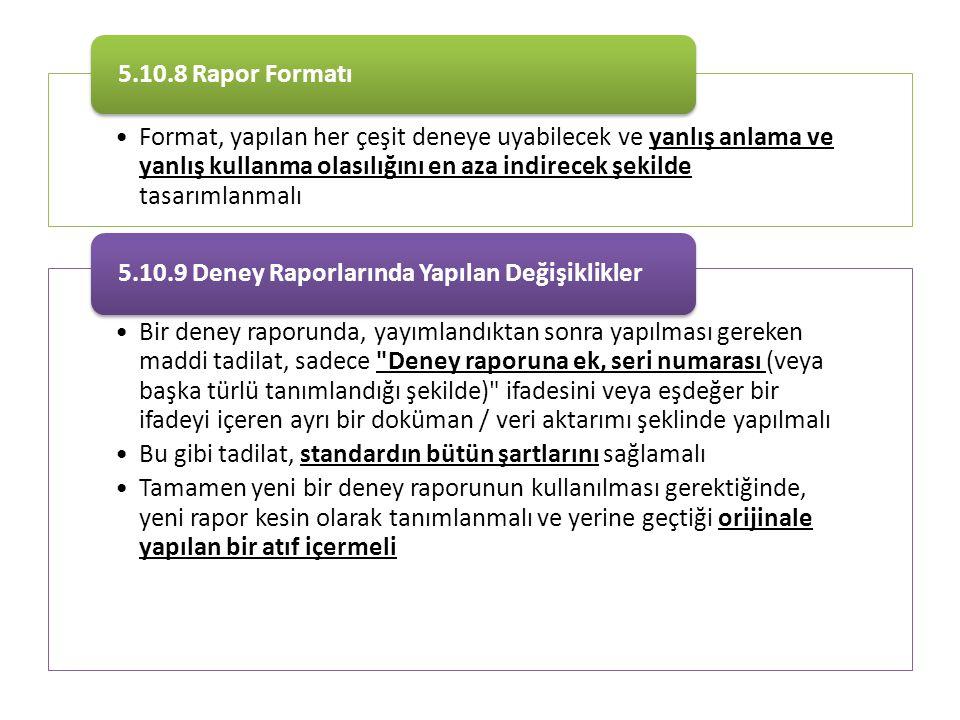 5.10.8 Rapor Formatı