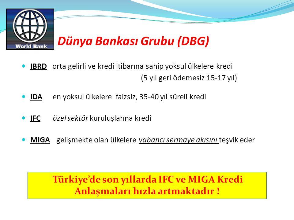Dünya Bankası Grubu (DBG)