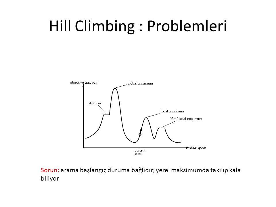 Hill Climbing : Problemleri