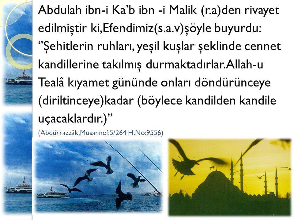 Abdulah ibn-i Ka'b ibn -i Malik (r.a)den rivayet