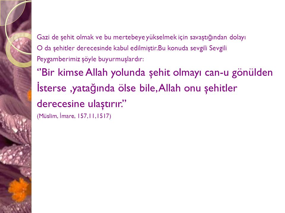 ''Bir kimse Allah yolunda şehit olmayı can-u gönülden