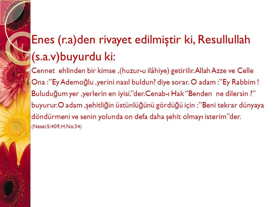 Enes (r.a)den rivayet edilmiştir ki, Resullullah (s.a.v)buyurdu ki: