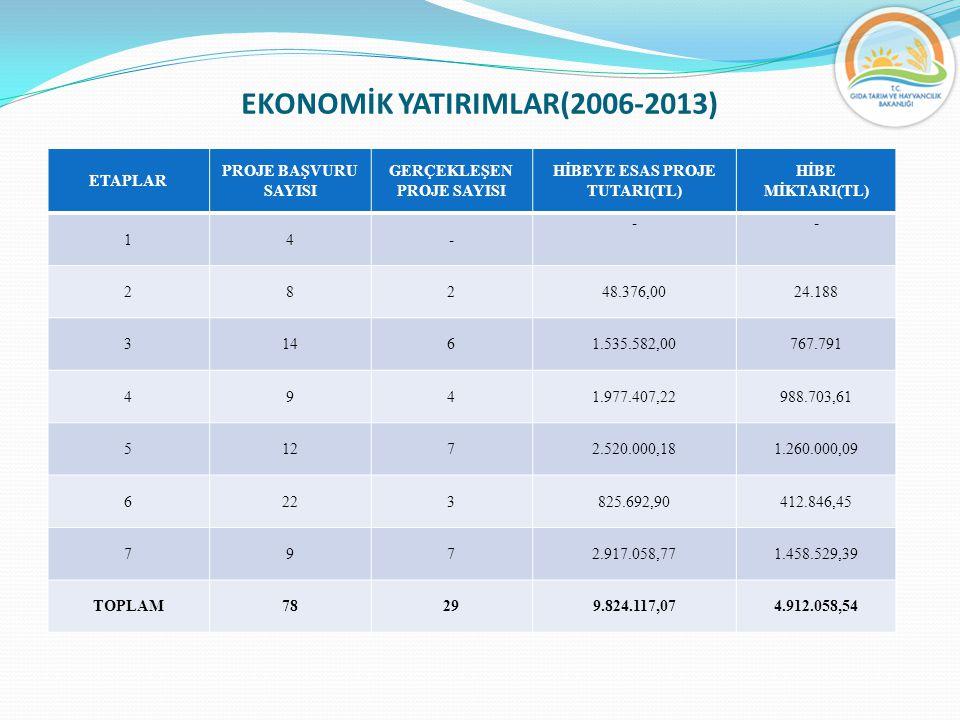 EKONOMİK YATIRIMLAR(2006-2013)